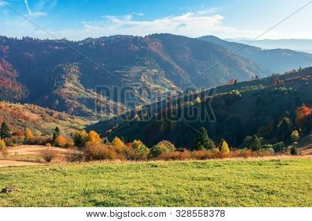 Autumn Sunny Evening In Mountain. Beautiful Countryside Landscape. Grassy Meadow On The Slope. Trees