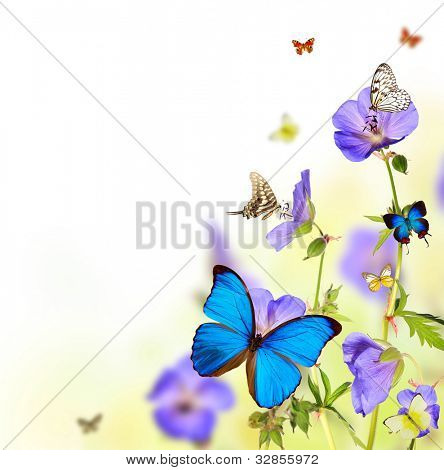 Beautiful flower background with exotic butterflies poster