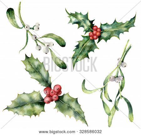 Watercolor Holly And Mistletoe Christmas Set. Hand Painted Holiday Plant With Red And White Berries