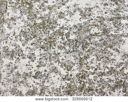 Concrete Texture. Gray Gorizontal Background Or Web Baner With Mos Spots. Distressed Old Wall.