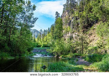 Surrounded By The Black Hills National Forest, Spearfish Creek Is A Fly Fishing Paradise And Holds O