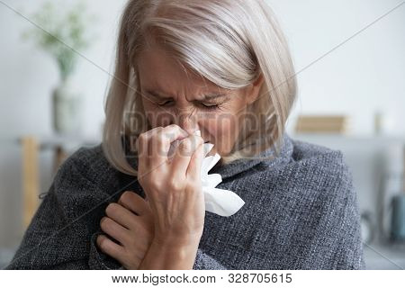 Ill Mature Woman Covered With Blanket Blowing Running Nose Sneeze