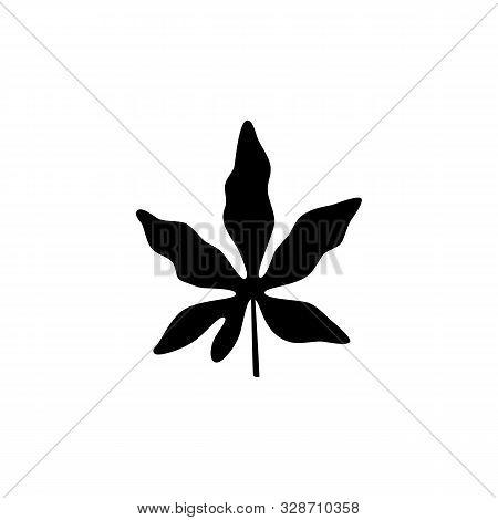Vector Illustration. Passiflora Leaf On White Background.
