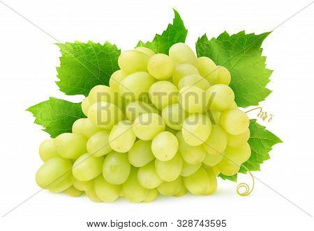 Isolated White Grape. Bunch Of Thompson Seedless Grapes With Leaves And Tendrils Isolated On White B