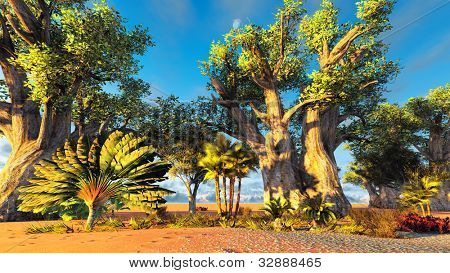 Traveler's tree (ravenala madagascariensis) poster