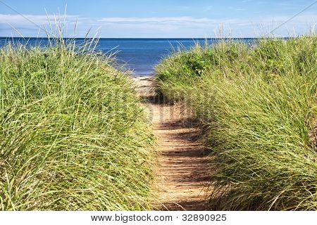 Sandy path to the beach over sand dunes with beach grass. At Cabot Beach, Prince Edward Island, Canada.