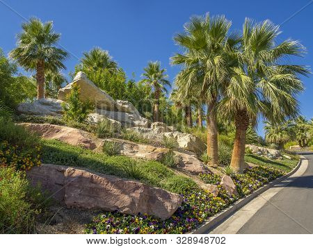 Manicured Desert Landscaping Including Palm Trees, Plants, Flowers,