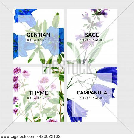 Set Of Four Cards With Wild Flowers On Background