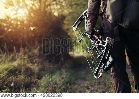 Man Hunts In The Forest With A Bow. The Hunter Aims.