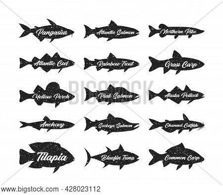 Fish Silhouettes Collection, Seafood Label Templates