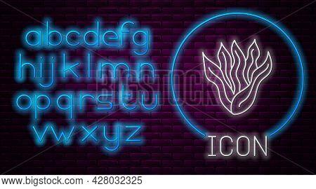 Glowing Neon Line Seaweed Icon Isolated On Brick Wall Background. Underwater Seaweed Spirulina, Aqua