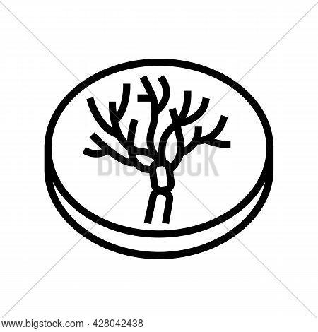 Penicillium Mold Fungi Line Icon Vector. Penicillium Mold Fungi Sign. Isolated Contour Symbol Black
