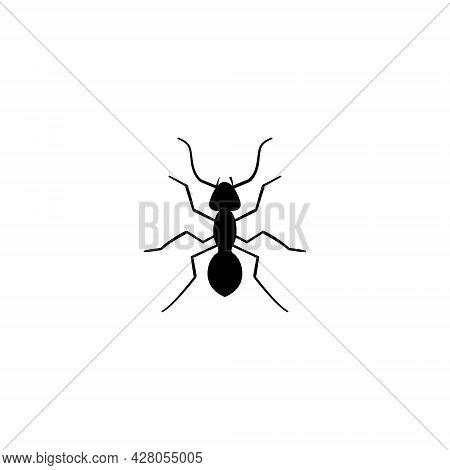 Ant Vector Icon Logo Silhouette Design. Ant Pictogram Icon