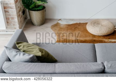 View From Above On Comfy Minimalist Grey Couch In Modern Living Room With Potted Plant, Cow Skin Rug