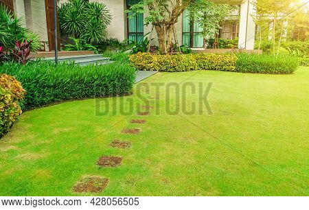 Pathways With Green Lawns, Landscaping In The Garden, Curve Walkway On Green Grass Field And Flower