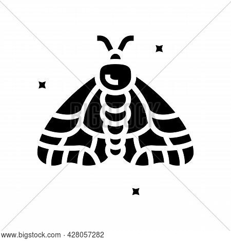 Insect Boho Glyph Icon Vector. Insect Boho Sign. Isolated Contour Symbol Black Illustration