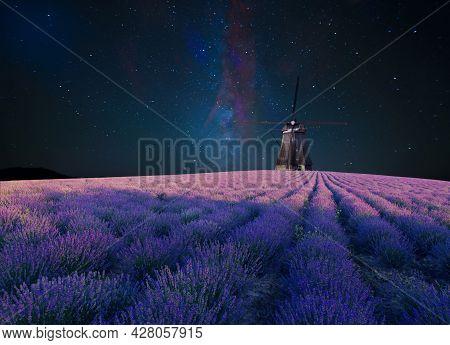 Lavender Field Summer Sunset Landscape Near Valensole.provence, France