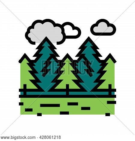 Coniferous Forests Color Icon Vector. Coniferous Forests Sign. Isolated Symbol Illustration
