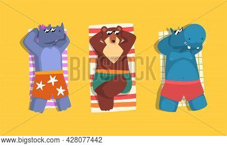 Animals Sunbathing On Beach Set, Top View Of Rhino, Bear, Hippo Relaxing On Seashore At Summer Holid