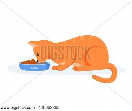 Hungry Cat Eating Food From Bowl. Red Domestic Cat Having Good Appetite. Feeding Pet With Kibble Or