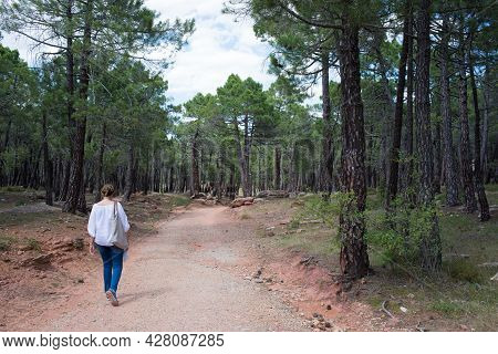 Caucasian Woman 40-50 Walking On A Forest Near Albarracin, Teruel. View Of Her Back, White Shirt And