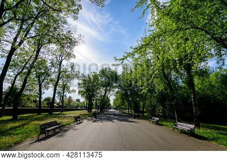 Landscape With Old Green Trees And Grey Alley In Mogosoaia Park (parcul Mogosoaia), A Weekend Attrac