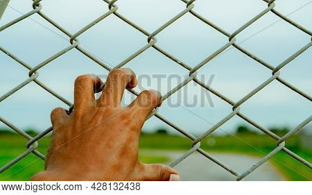 Man Hand Holding Metal Chain Link Fence. Refugee And Immigrant Concept. Life And Freedom. Anguish, G