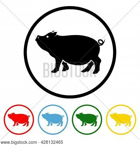 Pig Icon Vector Illustration Design Element With Four Color Variations. Vector Illustration. All In
