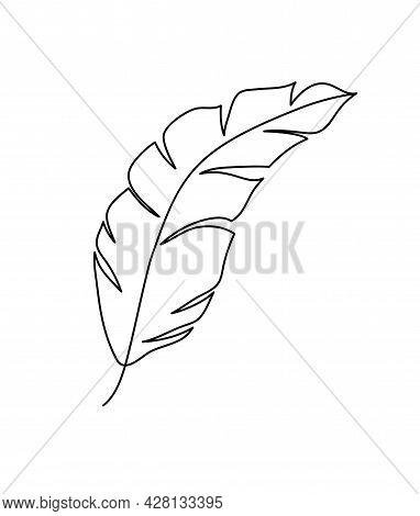 Monoline Vector Drawing Exotic Tropical Leaf Monstera Plant. Printable Decorative Houseplant Concept