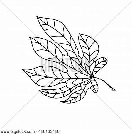 Hand Drawn Autumn Chestnut Leaf In Doodle Style. Leaf Icon On White Background. Vector Illustration