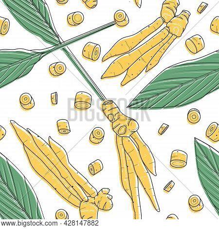 Kaempferia Sketch Drawn On A White Background. Hand Drawn Green Leaf Seamless Pattern. Vector Illust