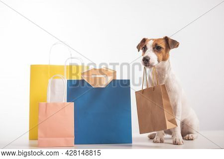 Dog Jack Russell Terrier Sitting Next To Different Paper Bags And Holding A Craft Bag In Its Mouth O