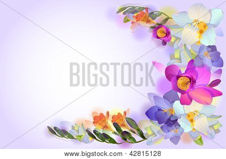 Vector Card With Branch Of Freesia Flowers
