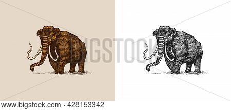 Mammoth Or Extinct Elephant. Trunked Mammals Or Proboscideans. Large Animal. Vintage Retro Signs. Do