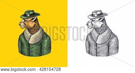 Cheetah Character. Guepard In Coat. Fashionable Animal, Vitorian Gentleman In A Jacket. Hand Drawn E