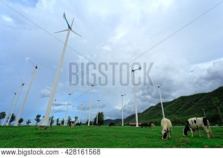 Wind Turbines In Farm And Blue Sky