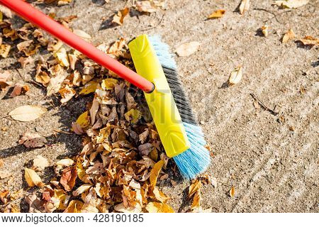 Sweeping The Fallen Leaves From The Garden Ground For Recycling During Autumn Fall Season.man Broomi