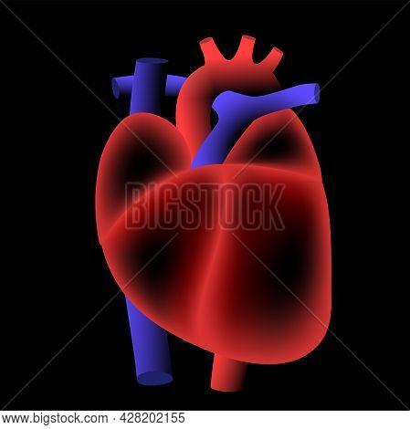 Human Heart Logo For Cardiology Clinic. Cardio And Healthcare Concept. Cardiovascular Disease And Tr