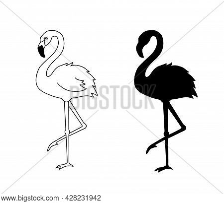 Vector Illustration Of Flamingo In Outline Style Is Isolated On White Background. Black Silhouette O