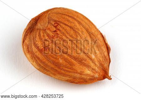 The Apricot Kernels On A White Background