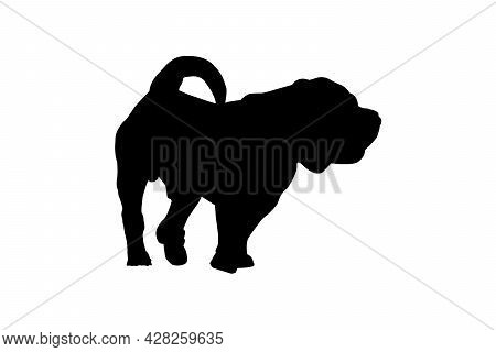 Black Silhouette Dog With Tail On White.  Adult Male Modern Meat-mouth Shar Pei. Vector Illustration