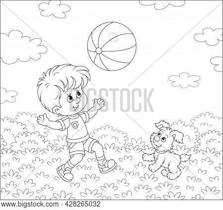 Happy Little Boy Running And Playing A Big Striped Ball With His Cute Merry Pup In A Pretty Park On