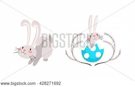 Funny Easter Bunny With Long Ears And Grey Coat Sitting In Cracked Egg Shell Vector Set