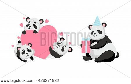 Funny Panda Bear With Black-and-white Coat And Rotund Body Holding Gift Box And Embracing Heart Vect