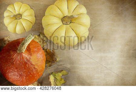 Thanksgiving Day. Thanksgiving Autumn Background Of Pumpkins. Thanksgiving. Copyspace