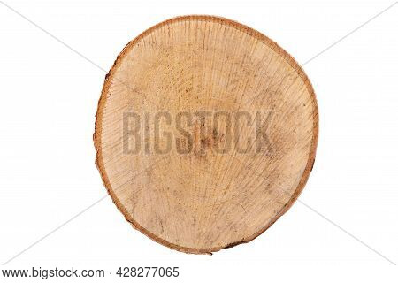 Top View: Light Cut Birch Isolated On White.