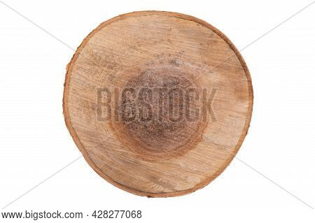 Top View: Dark And Large Birch Cut Isolated On White.