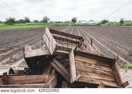 Pile Of Wooden Crates On A Farm Field. End Of Potato Planting Campaign. Agroindustry. Farm Landscape