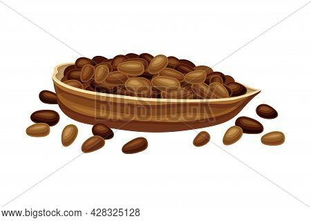 Dried Pod Of Theobroma Cacao As Aromatic Chocolate Ingredient Vector Illustration