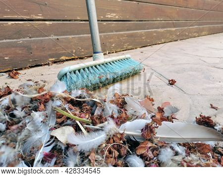 Pile Of Dust Included Dried Leaves And Feathers And Any Other Dusts On The Ground With A Long Sweepi